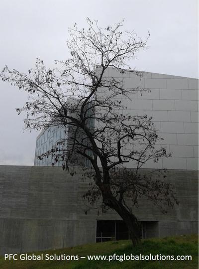 Biblioteca_A_Matute_3